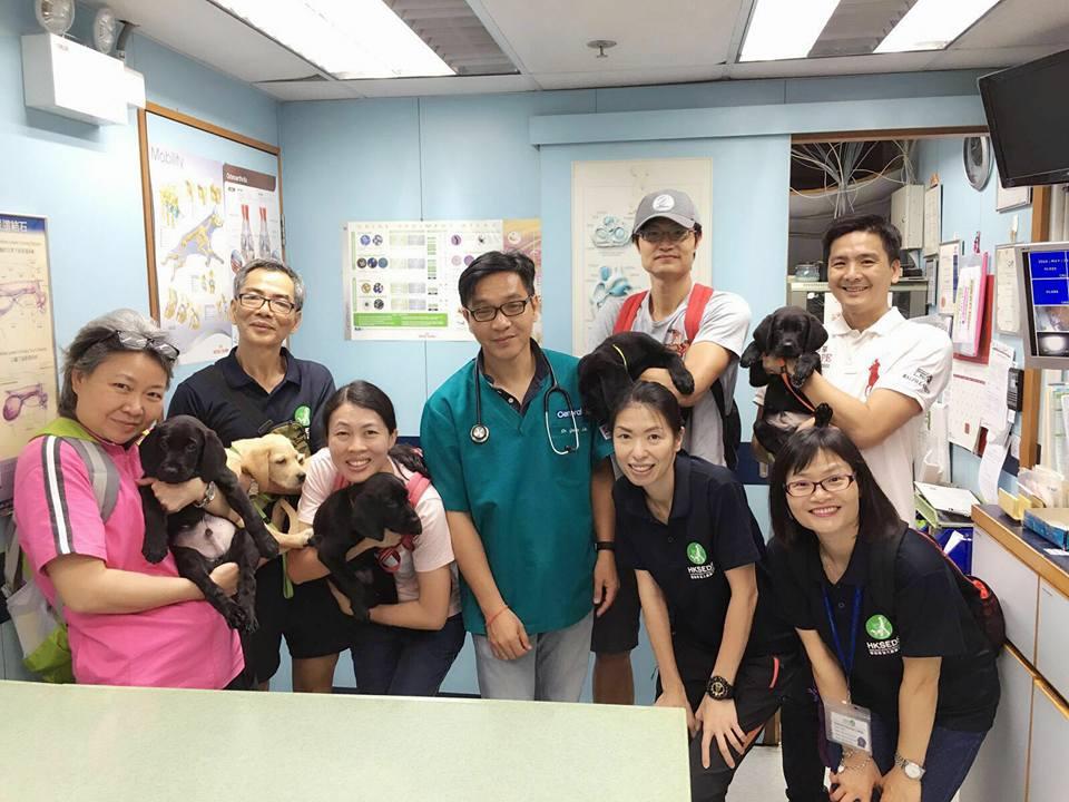 Hong Kong Seeing Eye Dog Services (HKSEDS)